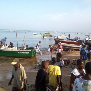 Enhancing Climate Change Resilience in The Benguela Current Fisheries System